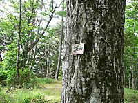 Siroyama005