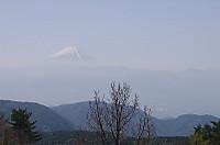 Fujisan010