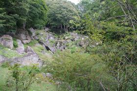 Seiunji001_2