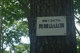 Imgp99881